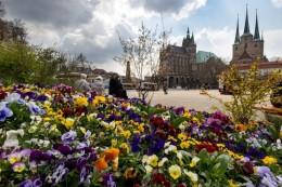 Trotz Pandemie: Baden im Blumenmeer - Bundesgartenschau eröffnet