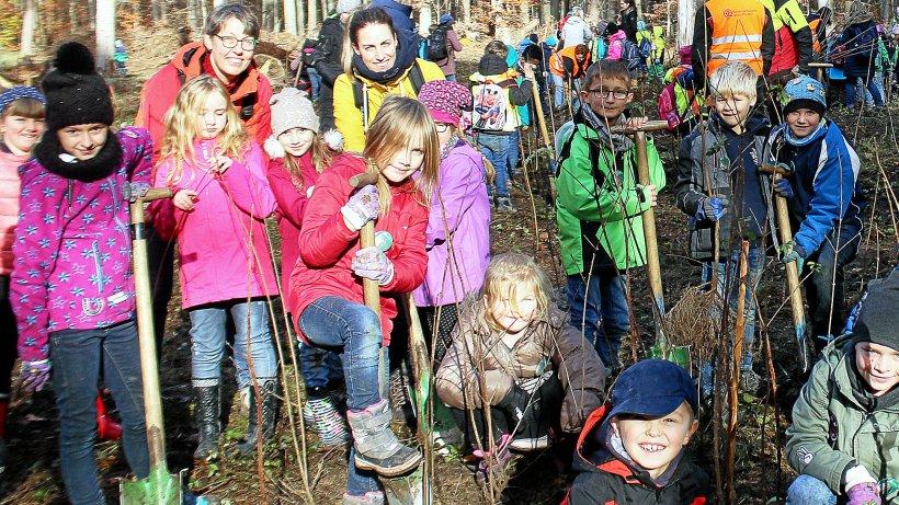Wolfenbüttel. : Kinder pflanzen im Lechlumer Holz 1200 Bäume